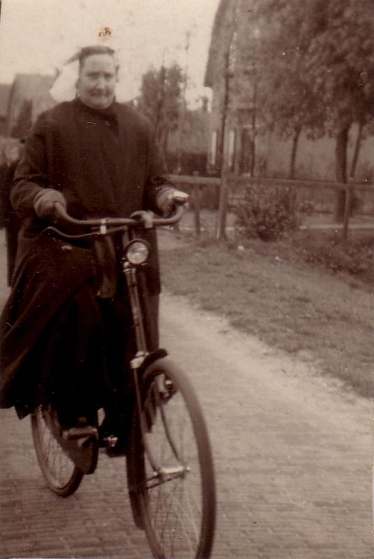 Cornelia van den Hoven