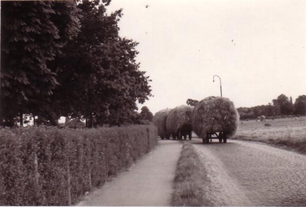 Bisschopsweg ca. 1950