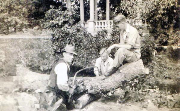Drie tuinmannen in het Cantonspark