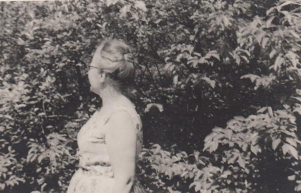 Hendrika Wilhelmina de Graaf