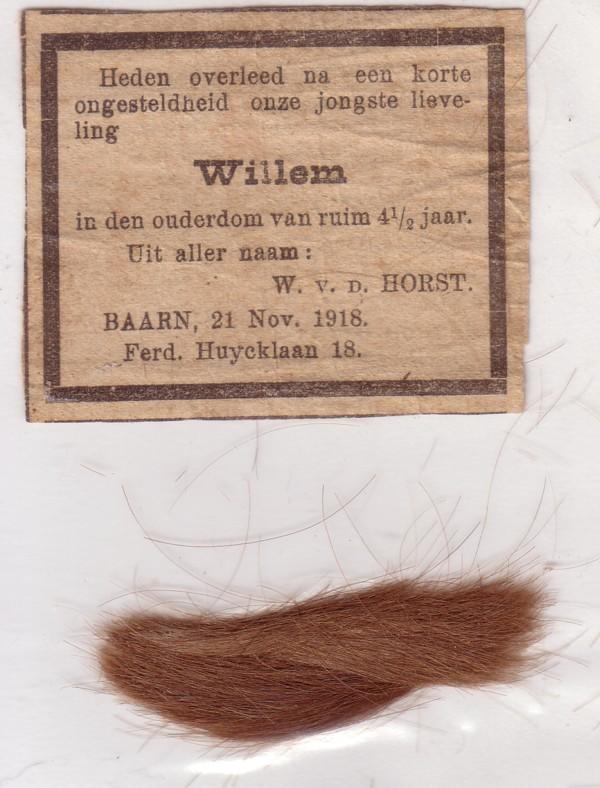 Willem van der Horst Jr.