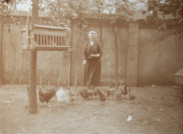 Annalida Jacoba Ploeg voert de kippen