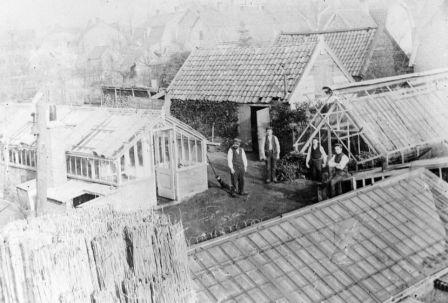 Burbankia, de kwekerij van Hendrik Hornsveld