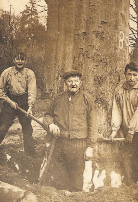 Marinus Knoppers, Jacob Knoppers en Cornelis van den Broek