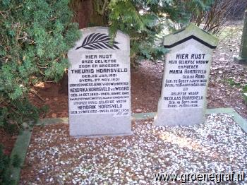 Grafmonument grafsteen Hendrika van der Woord