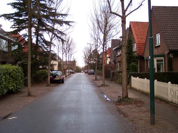 Woningen aan de d' Aulnislaan gebouwd