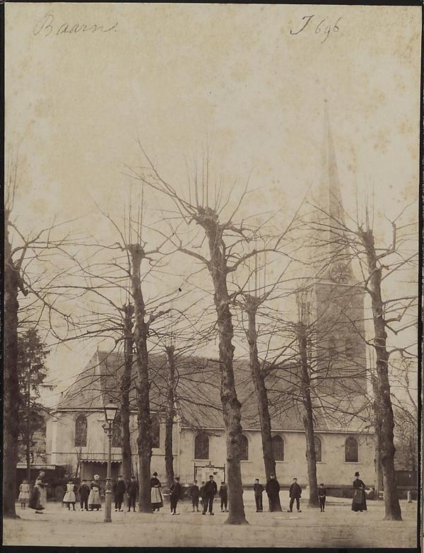 Wilgenbomen op de Brink worden verkocht